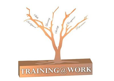 Training at Work (Pty) Ltd